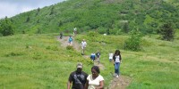hiking_roan_mountain_trail_2